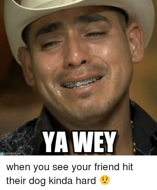 Memegen: memegen es  YAWEY when you see your friend hit their dog kinda hard 😟