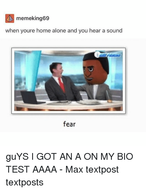 Being Alone, Home Alone, and Memes: memeking69  when youre home alone and you hear a sound  fear guYS I GOT AN A ON MY BIO TEST AAAA - Max textpost textposts