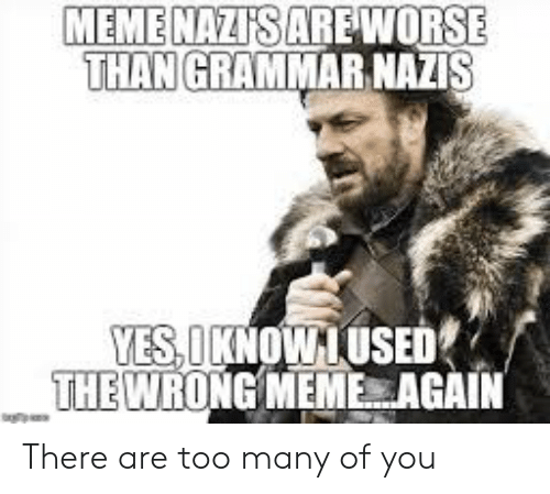 Wrong Meme: MEMENAZI'S ARE WORSE  THAN GRAMMAR NAZIS  YES,OKNOWIUSED  THE WRONG MEME AGAIN There are too many of you