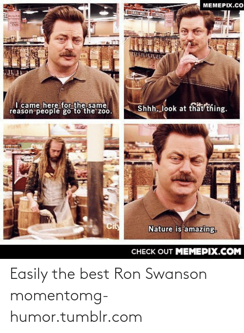 Trail Mix: MEMEPIX.CO  TRAIL MIX  I came here for the same  reason people go to the zoo.  Shhh, look at that thing.  Cit  Nature is amazing.  CНЕCK OUT MЕМЕРІХ.COM Easily the best Ron Swanson momentomg-humor.tumblr.com