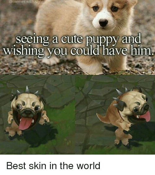 Memerized: @memer,with sty e  Seeing a cute puppy and  wishing you could have him Best skin in the world