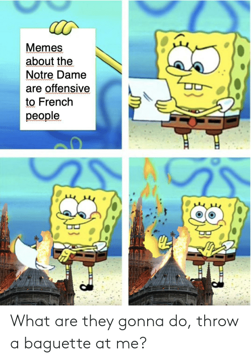 baguette: Memes  about the  Notre Dame  are offensive  to French  people.  od What are they gonna do, throw a baguette at me?