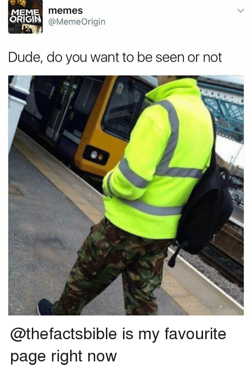 Origin Meme: memes  MEME  ORIGIN  Meme Origin  Dude, do you want to be seen or not @thefactsbible is my favourite page right now