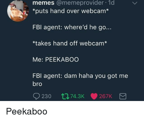 hand off: memes @memeprovider 1d  *puts hand over webcam  FBl agent: where'd he go...  *takes hand off webcam*  Me: PEEKABOO  FBl agent: dam haha you got me  bro  230 t74.3K267K <p>Peekaboo</p>