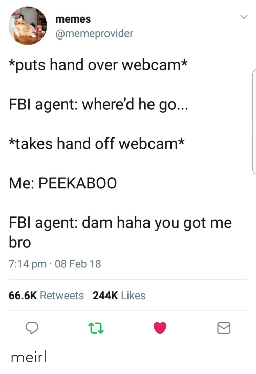 hand off: memes  @memeprovider  *puts hand over webcam*  FBI agent: where'd he go...  *takes hand off webcam*  Me: PEEKABOO  FBI agent: dam haha you got me  7:14 pm 08 Feb 18  66.6K Retweets 244K Likes meirl