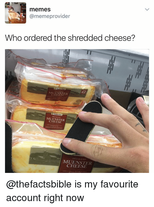 cheesing: memes  @memeprovider  Who ordered the shredded cheese?  42  MUENSTER  CHEESE  MIUEN STER  CHEESE  1 @thefactsbible is my favourite account right now