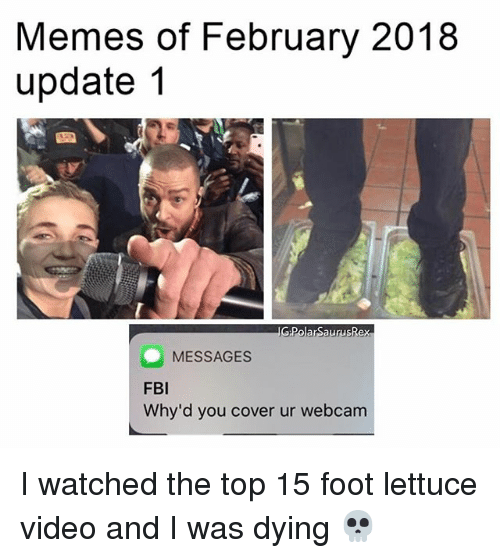 Fbi, Memes, and Video: Memes of February 2018  update 1  PolarSaurusRex  MESSAGES  FBI  Why'd you cover ur webcam I watched the top 15 foot lettuce video and I was dying 💀