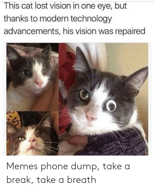 dump: Memes phone dump, take a break, take a breath
