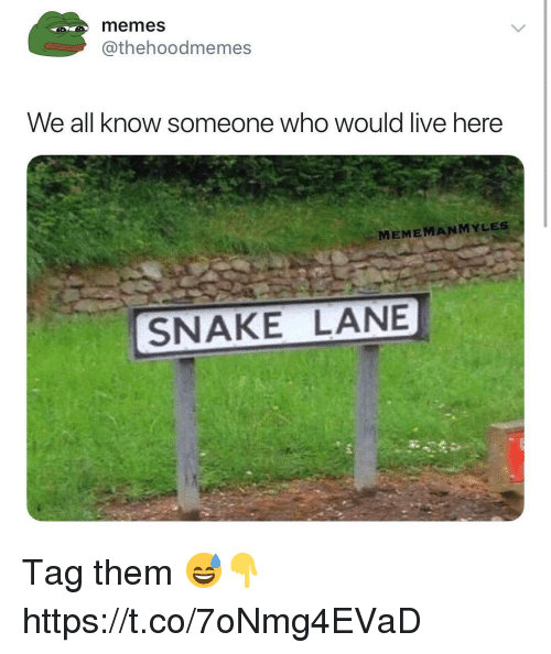 Memes, Live, and Snake: memes  @thehoodmemes  We all know someone who would live here  MEMEMANMYLES  SNAKE LANE Tag them 😅👇 https://t.co/7oNmg4EVaD