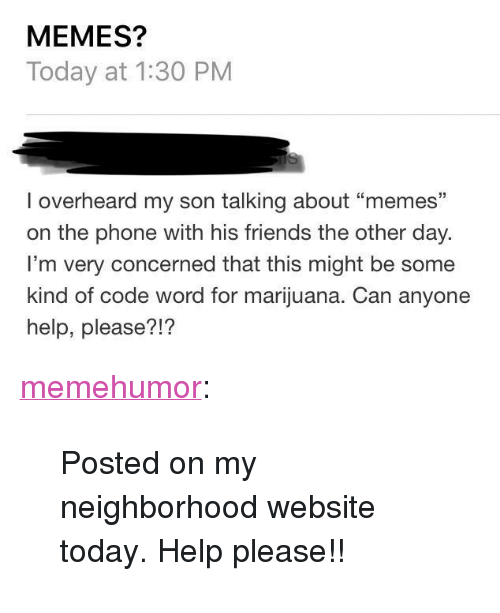 """Help Please: MEMES?  Today at 1:30 PM  I overheard my son talking about """"memes""""  on the phone with his friends the other day.  I'm very concerned that this might be some  kind of code word for marijuana. Can anyone  help, please?!? <p><a href=""""http://memehumor.net/post/166895384287/posted-on-my-neighborhood-website-today-help"""" class=""""tumblr_blog"""">memehumor</a>:</p>  <blockquote><p>Posted on my neighborhood website today. Help please!!</p></blockquote>"""