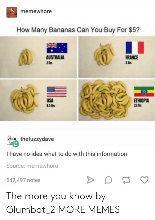 ethiopia: memewhore  How Many Bananas Can You Buy For $5?  FRANCE  AUSTRALIA  3 lbs  USA  ETHIOPIA  25 s  o thefuzzydave  I have no idea what to do with this information  Source: memewhore  547,497 notes The more you know by Glumbot_2 MORE MEMES
