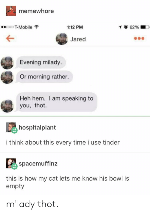 mlady: memewhore  T-Mobile  1:12 PM  Jared  Evening milady.  Or morning rather.  Heh hem. I am speaking to  you, thot.  hospitalplant  i think about this every time i use tinder  spacemuffinz  this is how my cat lets me know his bowl is  empty m'lady thot.