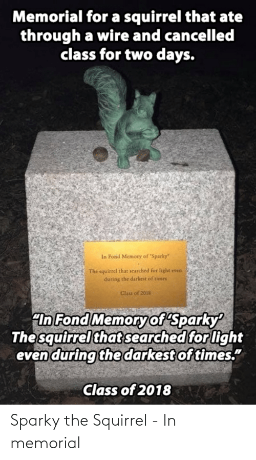 "Squirrel: Memorial for a squirrel that ate  through a wire and cancelled  class for two days.  In Fond Memory of Sparky""  The squirrel that searched for light even  during the darkest of times  Clas of 2018  ""In Fond Memoryof Sparky  The squirrel that searched for light  even during the darkest of times.""  Class of 2018 Sparky the Squirrel - In memorial"