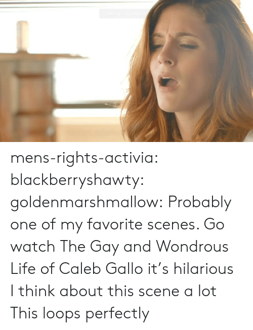 scenes: mens-rights-activia: blackberryshawty:  goldenmarshmallow:  Probably one of my favorite scenes. Go watch The Gay and Wondrous Life of Caleb Gallo it's hilarious   I think about this scene a lot   This loops perfectly