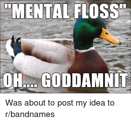 "Funny, Flo, and Idea: ""MENTAL FLO  GODDA  UU Was about to post my idea to r/bandnames"