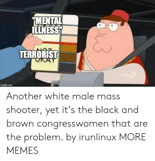 """white male: MENTAL  ILLNESS""""  TERRORIST  imgflip.com Another white male mass shooter, yet it's the black and brown congresswomen that are the problem. by irunlinux MORE MEMES"""