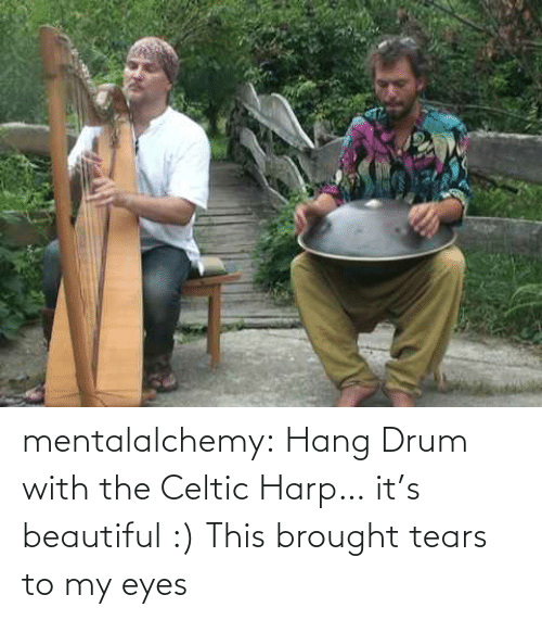Celtic: mentalalchemy:  Hang Drum with the Celtic Harp… it's beautiful :)  This brought tears to my eyes