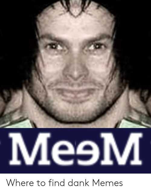 Where To Find Dank Memes: MeoM Where to find dank Memes