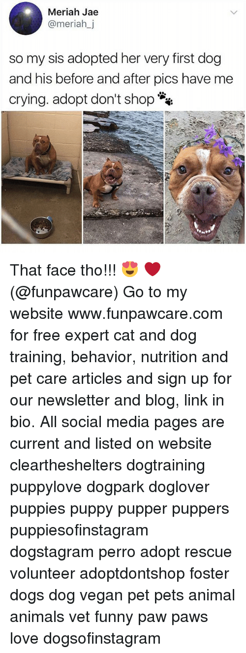 Animals, Crying, and Dogs: Meriah Jae  @meriah_j  so my sis adopted her very first dog  and his before and after pics have me  crying. adopt don't shop That face tho!!! 😍 ❤ (@funpawcare) Go to my website www.funpawcare.com for free expert cat and dog training, behavior, nutrition and pet care articles and sign up for our newsletter and blog, link in bio. All social media pages are current and listed on website cleartheshelters dogtraining puppylove dogpark doglover puppies puppy pupper puppers puppiesofinstagram dogstagram perro adopt rescue volunteer adoptdontshop foster dogs dog vegan pet pets animal animals vet funny paw paws love dogsofinstagram