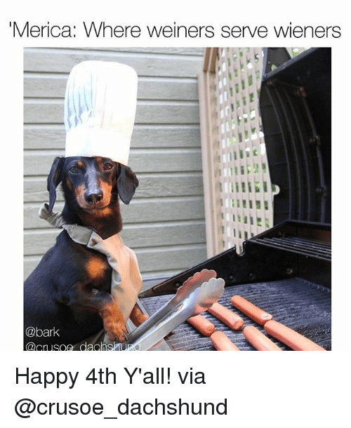 Memes, Happy, and 🤖: Merica: Where weiners serve wieners  IIE  @bark  @crusoe dachS Happy 4th Y'all! via @crusoe_dachshund