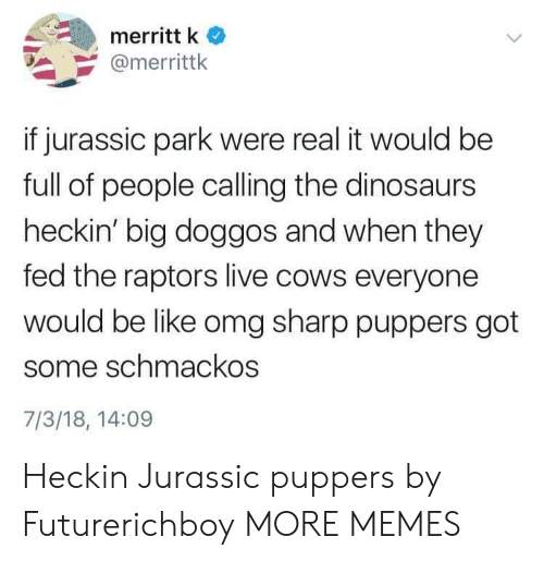 Like Omg: merritt k  @merrittk  if jurassic park were real it would be  full of people calling the dinosaurs  heckin' big doggos and when they  fed the raptors live cows everyone  would be like omg sharp puppers got  some schmackos  7/3/18, 14:09 Heckin Jurassic puppers by Futurerichboy MORE MEMES