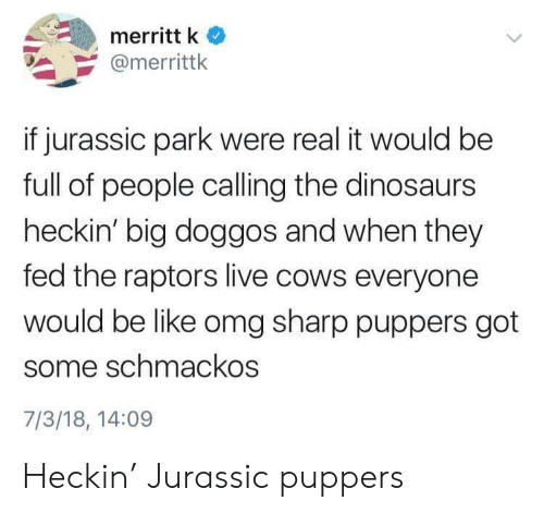 Like Omg: merritt k  @merrittk  if jurassic park were real it would be  full of people calling the dinosaurs  heckin' big doggos and when they  fed the raptors live cows everyone  would be like omg sharp puppers got  some schmackos  7/3/18, 14:09 Heckin' Jurassic puppers