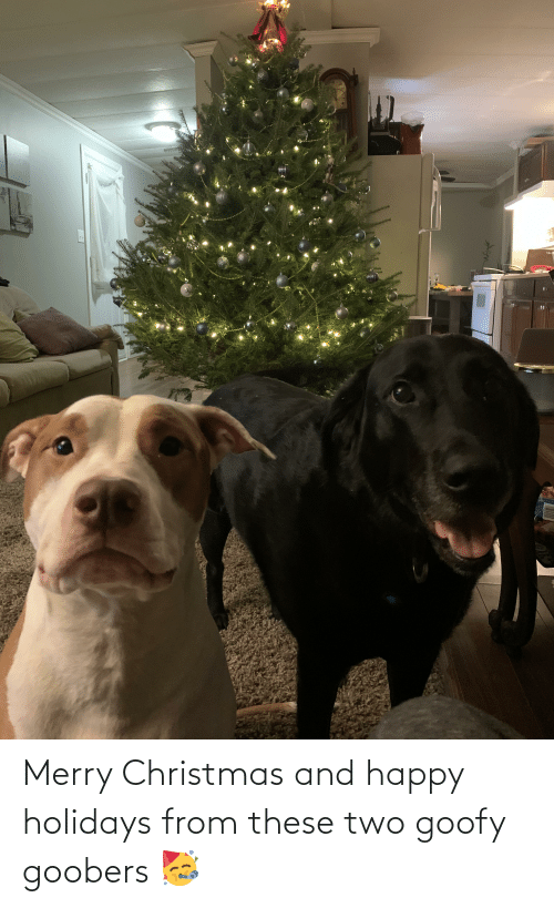 goofy goobers: Merry Christmas and happy holidays from these two goofy goobers 🥳