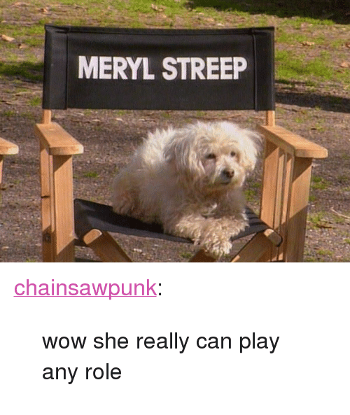 "Meryl Streep: MERYL STREEP <p><a class=""tumblr_blog"" href=""http://chainsawpunk.tumblr.com/post/49908113684/wow-she-really-can-play-any-role"">chainsawpunk</a>:</p> <blockquote> <p>wow she really can play any role</p> </blockquote>"