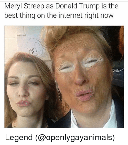 Donald Trump, Funny, and Internet: Meryl Streep as Donald Trump is the  best thing on the internet right now Legend (@openlygayanimals)