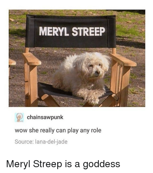 Memes, Wow, and Meryl Streep: MERYL STREEP  chainsaw punk  wow she really can play any role  Source: lana del jade Meryl Streep is a goddess