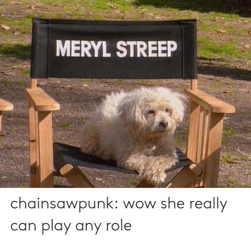 Meryl Streep: MERYL STREEP chainsawpunk: wow she really can play any role