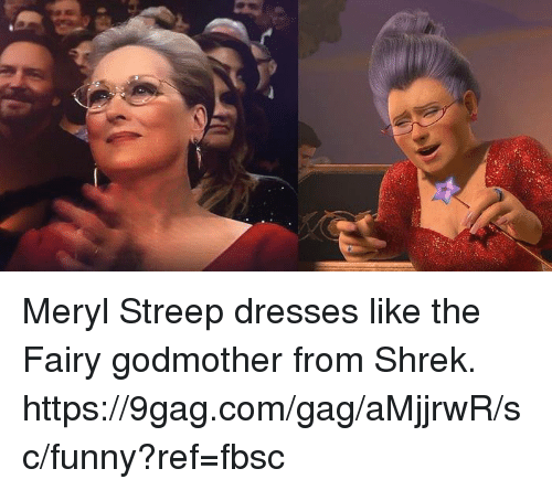 Meryl Streep: Meryl Streep dresses like the Fairy godmother from Shrek.  https://9gag.com/gag/aMjjrwR/sc/funny?ref=fbsc