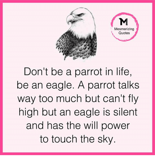 Mesmerizing Quotes For Fun: 25+ Best Memes About Touch The Sky