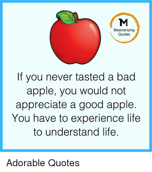 Appling: Mesmerizing  Quotes  If you never tasted a bad  apple, you would not  appreciate a good apple.  You have to experience life  to understand life Adorable Quotes