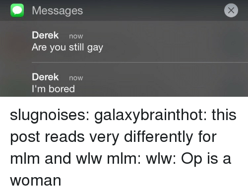 mlm: Messages  Derek now  Are you still gay  Derek now  I'm bored slugnoises:  galaxybrainthot: this post reads very differently for mlm and wlw mlm: wlw:  Op is a woman
