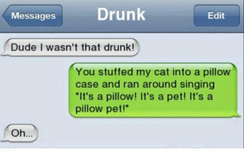 "pillow pets: Messages Drunk  Edit  Dude I wasn't that drunk!  You stuffed my cat into a pillow  case and ran around singing  ""It's a pillow! It's a pet! It's a  pillow pet!""  Oh.."