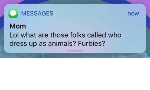 What Are Those: MESSAGES  Mom  Lol what are those folks called who  dress up as animals? Furbies?  now
