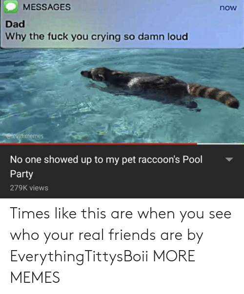 raccoons: MESSAGES  now  Dad  Why the fuck you crying so damn loud  levin.memes  No one showed up to my pet raccoon's Pool  Party  279K views Times like this are when you see who your real friends are by EverythingTittysBoii MORE MEMES