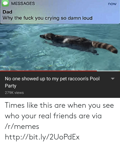 raccoons: MESSAGES  now  Dad  Why the fuck you crying so damn loud  @levin.memes  No one showed up to my pet raccoon's Pool  Party  279K views Times like this are when you see who your real friends are via /r/memes http://bit.ly/2UoPdEx