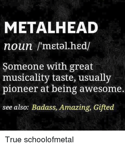 Memes, 🤖, and Pioneer: METAL HEAD  noun /'metal hed/  Someone with great  musicality taste, usually  pioneer at being awesome.  see also: Badass, Amazing, Gifted True schoolofmetal
