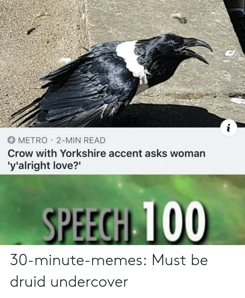 "undercover: METRO 2-MIN READ  Crow with Yorkshire accent asks woman  'y'alright love?"" 30-minute-memes: Must be druid undercover"