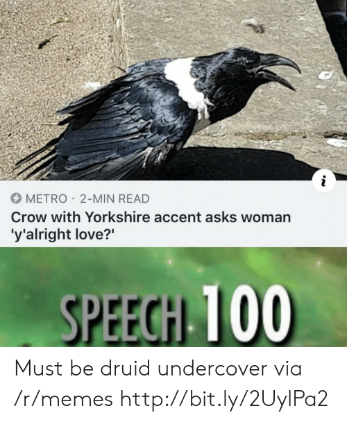 Druid: METRO 2-MIN READ  Crow with Yorkshire accent asks woman  'y'alright love?'  SPEECH TO0 Must be druid undercover via /r/memes http://bit.ly/2UylPa2