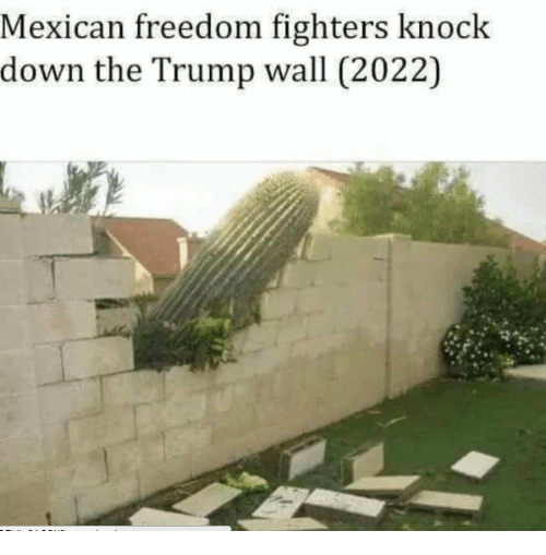 Trumps Wall: Mexican freedom fighters knock  down the Trump wall (2022)