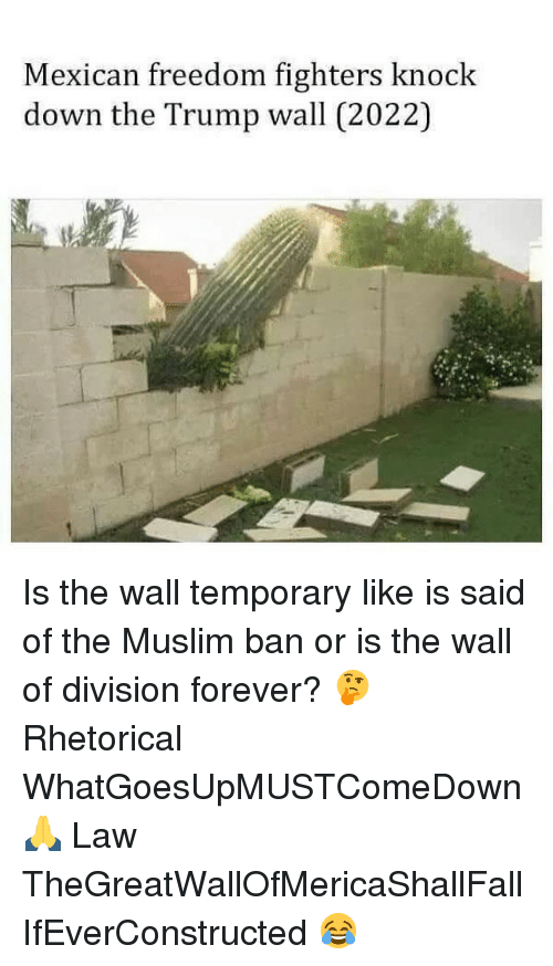 knock down: Mexican freedom fighters knock  down the Trump wall (2022) Is the wall temporary like is said of the Muslim ban or is the wall of division forever? 🤔 Rhetorical WhatGoesUpMUSTComeDown 🙏 Law TheGreatWallOfMericaShallFall IfEverConstructed 😂