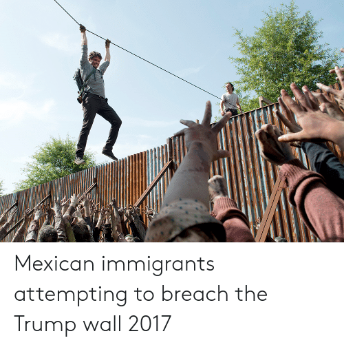 Trump Wall: Mexican immigrants attempting to breach the Trump wall 2017