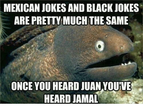 Mexicans Jokes: MEXICAN JOKES AND BLACK JOKES  ARE PRETTYMUCHTHE SAME  ONCE YOU HEARD JUAN YOURVE  HEARD JAMAL
