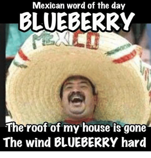 Funny Meme Of The Day : Mexican word of the day blueberry roof my house is
