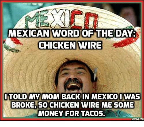 Mexican Word Of The Day Chicken: MEXICAN WORD OF THE DAY:  CHICKEN WIRE  TOLD MY MOM  BACK IN MEXICO IWAS  BROKE,SO CHICKEN WIRE ME SOME  MONEY FOR TACOS.  ADDTEXT.COM