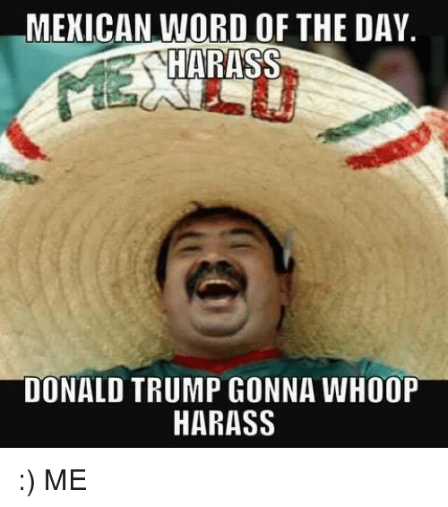 Donald Trump, Memes, and Trump: MEXICAN WORD OF THE DAY  DONALD TRUMP GONNA WHOOP  HARASS :) ME