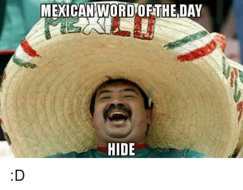 Memes, Mexican Word of the Day, and Mexican: MEXICAN WORD OF THE DAY  HIDE :D